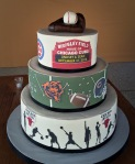 Chicago Sports Cake