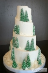 Snow Ski Wedding Cake