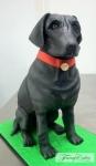 Black Labrador Cake